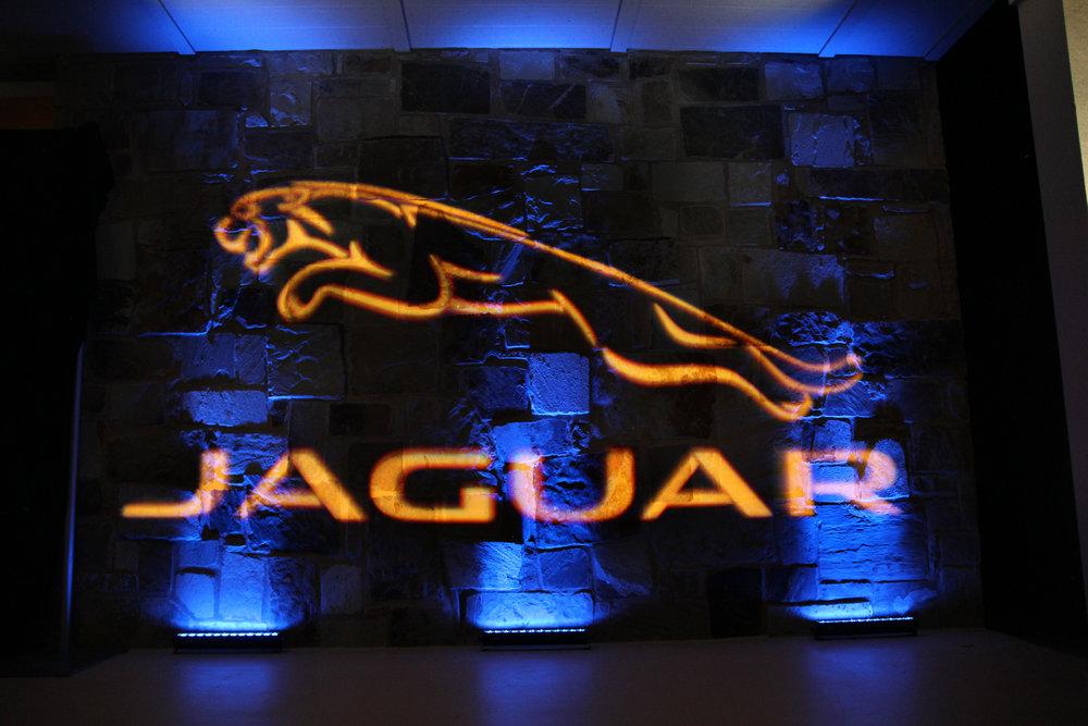 jaguar_(4)